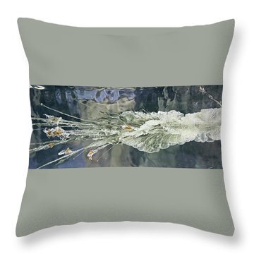 Bullet Fragmentation Abstract Throw Pillow by Kristin Elmquist
