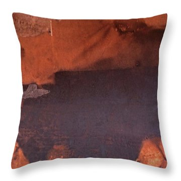 Bullfight Throw Pillow by Laurie Stewart