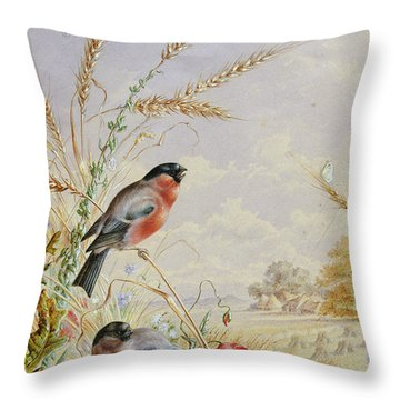 Bullfinches In A Harvest Field Throw Pillow by Harry Bright