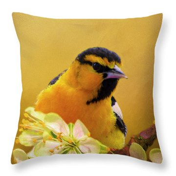 Bullocks Oriel Throw Pillow