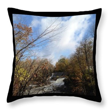 Bulls Bridge Throw Pillow