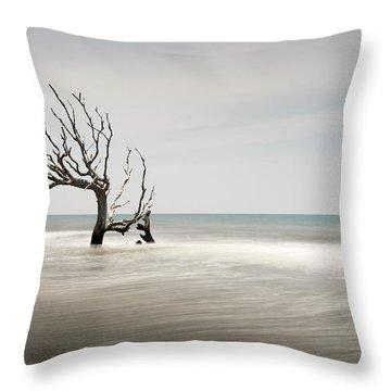 Bulls Island C-iv Throw Pillow