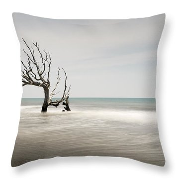 Bulls Island C-iv Throw Pillow