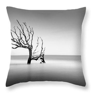 Boneyard Beach  Xiv Throw Pillow
