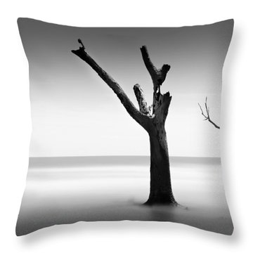Bulls Island Vii Throw Pillow