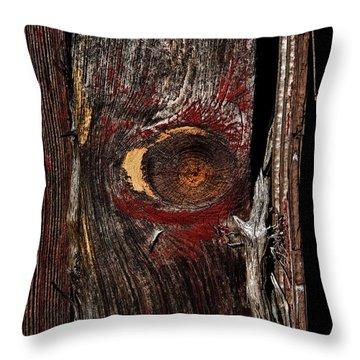 Bullseye Throw Pillow by Murray Bloom