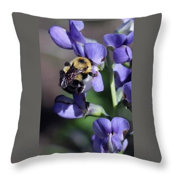 Bumble Bee, Blue Indigo Throw Pillow