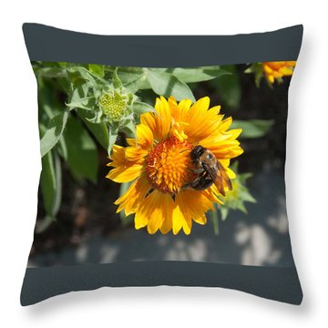 Bumble Bee Collecting Pollen On Sunflower Throw Pillow