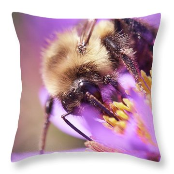 Bumble Bee On Aster Throw Pillow
