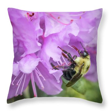 Bumble Bee On Rhododendron Throw Pillow by Jim Hughes