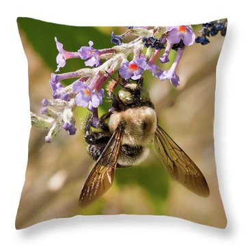 Throw Pillow featuring the photograph Bumble Bee Up Close And Personal by Lara Ellis