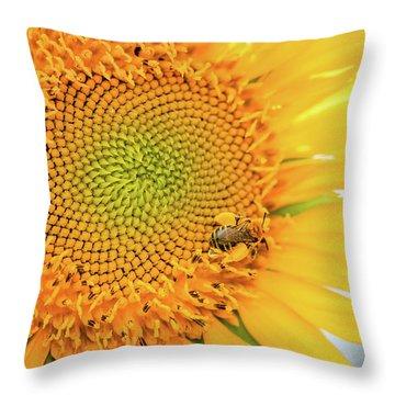 Bumble Bee With Pollen Sacs Throw Pillow