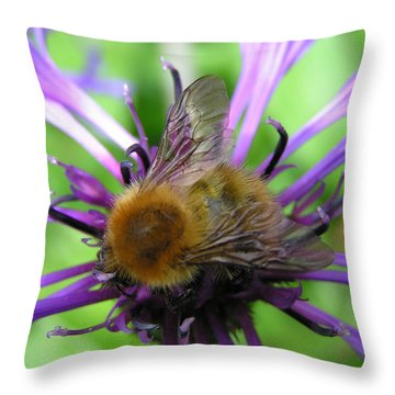 Bumblebee In Blue Throw Pillow