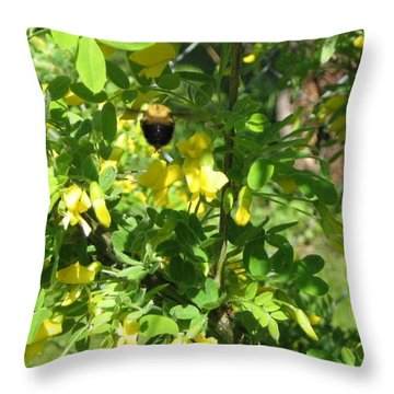 Bumblebee In Flight In Yellow Flowers Throw Pillow