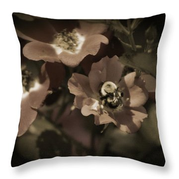 Bumblebee On Blush Country Rose In Sepia Tones Throw Pillow