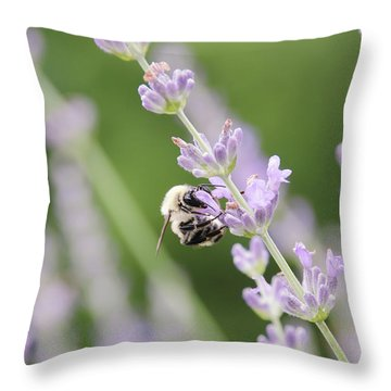 Throw Pillow featuring the photograph Bumblebee On The Lavender Field 2 by Andrea Anderegg