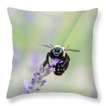 Throw Pillow featuring the photograph Bumblebee On The Lavender Field by Andrea Anderegg