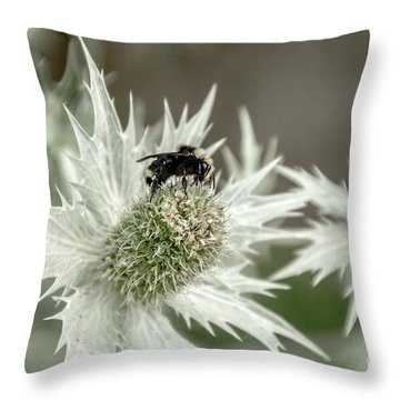 Bumblebee On Thistle Flower Throw Pillow