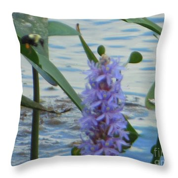Bumblebee Pickerelweed Moth Throw Pillow