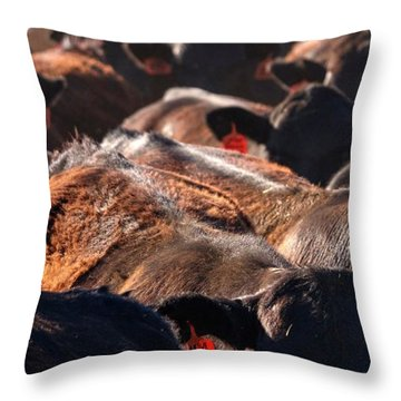 Throw Pillow featuring the photograph Bumper To Bumper by Quality HDR Photography