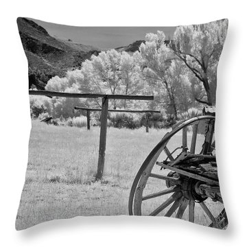 Bumpy Ride Throw Pillow