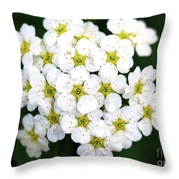 Bundle Throw Pillow