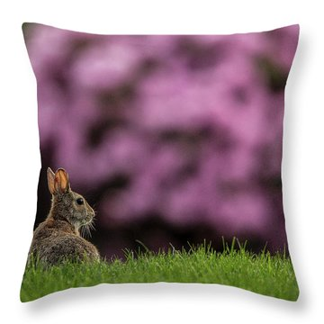 Bunny In The Yard Throw Pillow