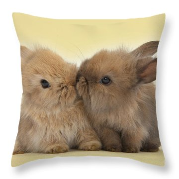 Bunny Kisses Throw Pillow
