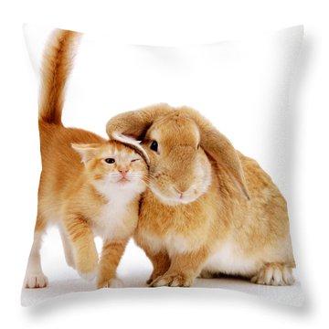 Bunny Rubbing Throw Pillow