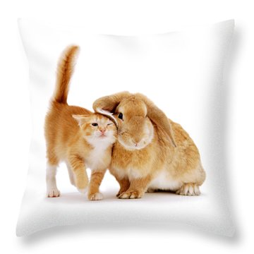 Bunny Rubbing Throw Pillow