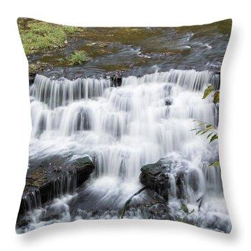 Burgess Falls Middle Throw Pillow