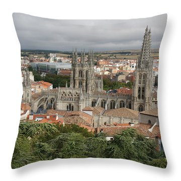 Burgos Throw Pillow