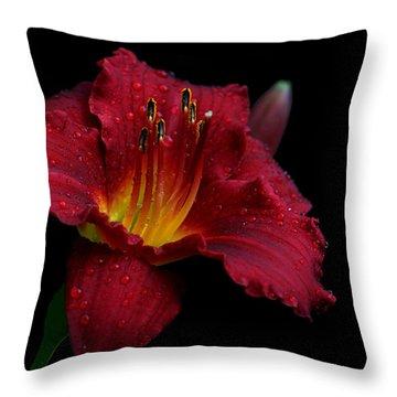 Burgundette Throw Pillow by Doug Norkum