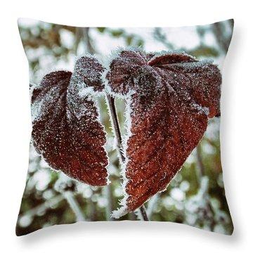Burgundy Frost Throw Pillow