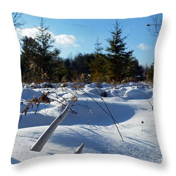 Buried Treasure Throw Pillow