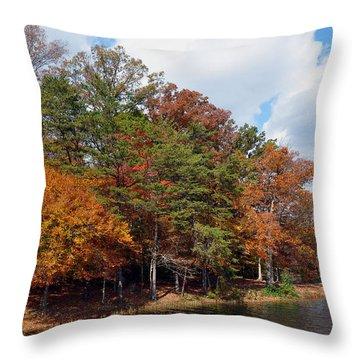 Throw Pillow featuring the photograph Burke Lake Park by Gina Savage