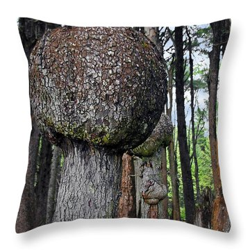 Burly Phantoms - Spruce Burls Beach One Olympic National Park Wa Throw Pillow by Christine Till