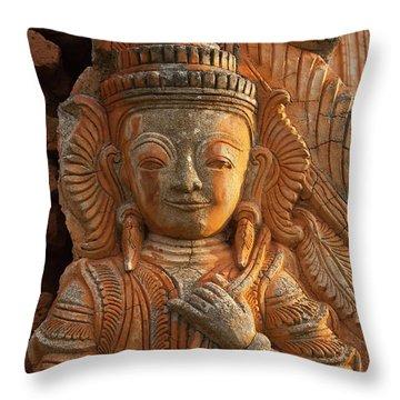 Burma_d187 Throw Pillow by Craig Lovell