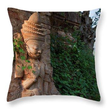 Burma_d195 Throw Pillow by Craig Lovell