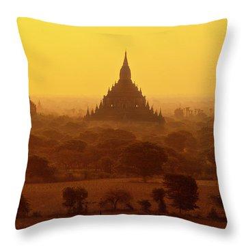 Burma_d2227 Throw Pillow by Craig Lovell