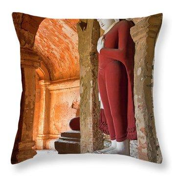 Burma_d2280 Throw Pillow by Craig Lovell