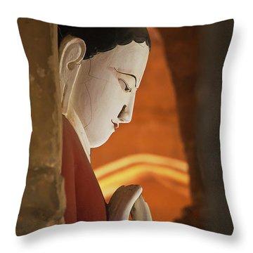 Burma_d2287 Throw Pillow by Craig Lovell