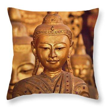 Burma_d579 Throw Pillow by Craig Lovell