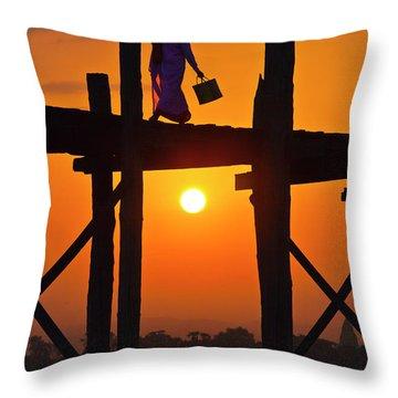 Burma_d807 Throw Pillow by Craig Lovell