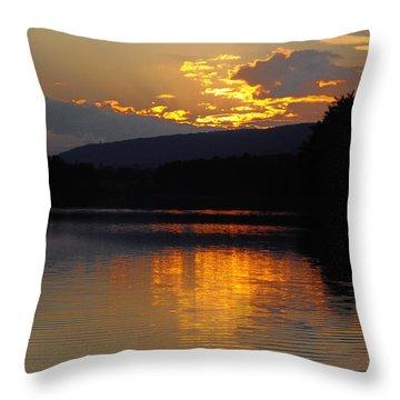 Burning Gold Throw Pillow by Vilas Malankar