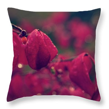 Burning Red Throw Pillow