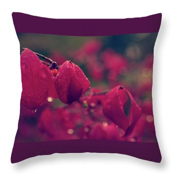 Burning Red Throw Pillow
