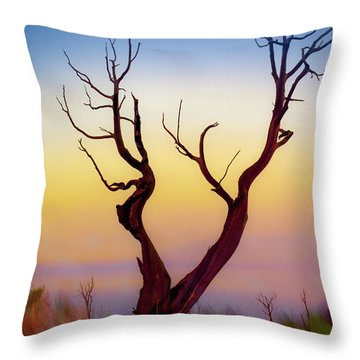 Burnt Cedar At Sunset Throw Pillow