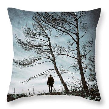 Burnt Land Throw Pillow