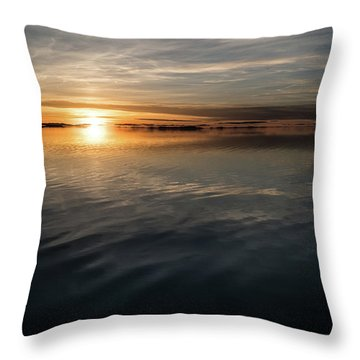 Burnt Reflection Throw Pillow by Justin Johnson